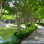 Summertime at Shops at Legacy